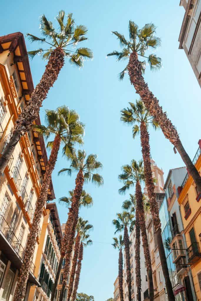 Eventos para empresas Málaga
