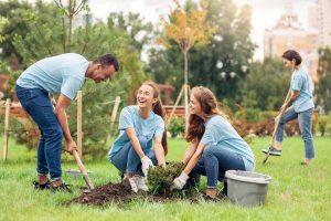 actividad para empresas reforestacion
