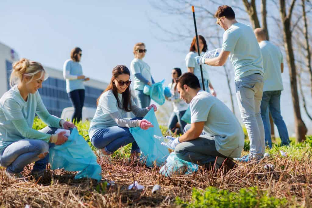 Team building plantación árboles